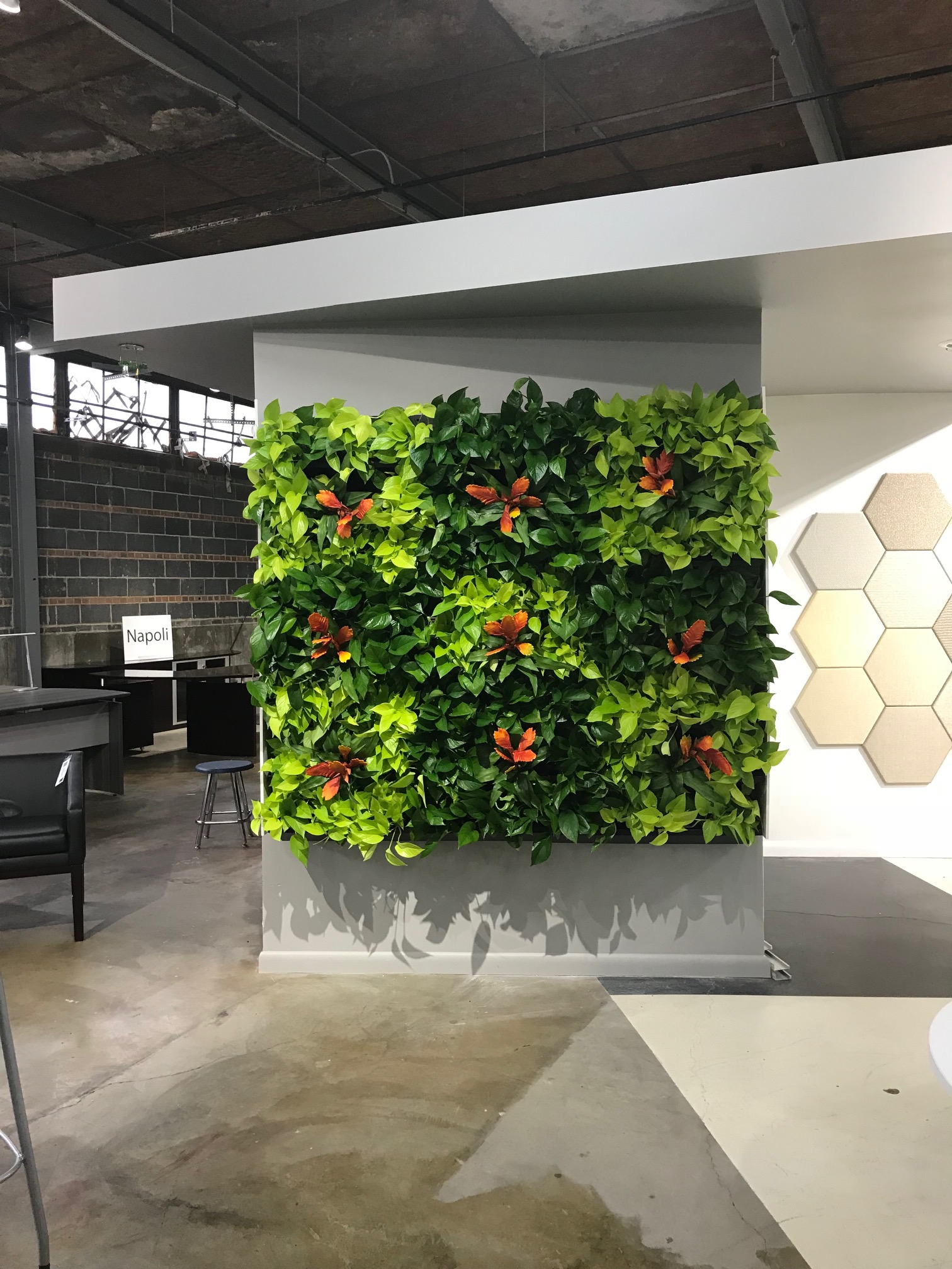 Living Wall By Innergreen We Design Install And Maintain